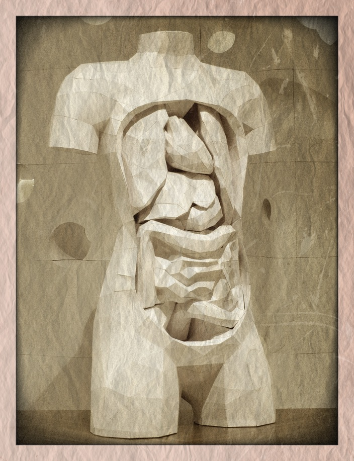 Modelos anatómicos de papel | PerikuBlog